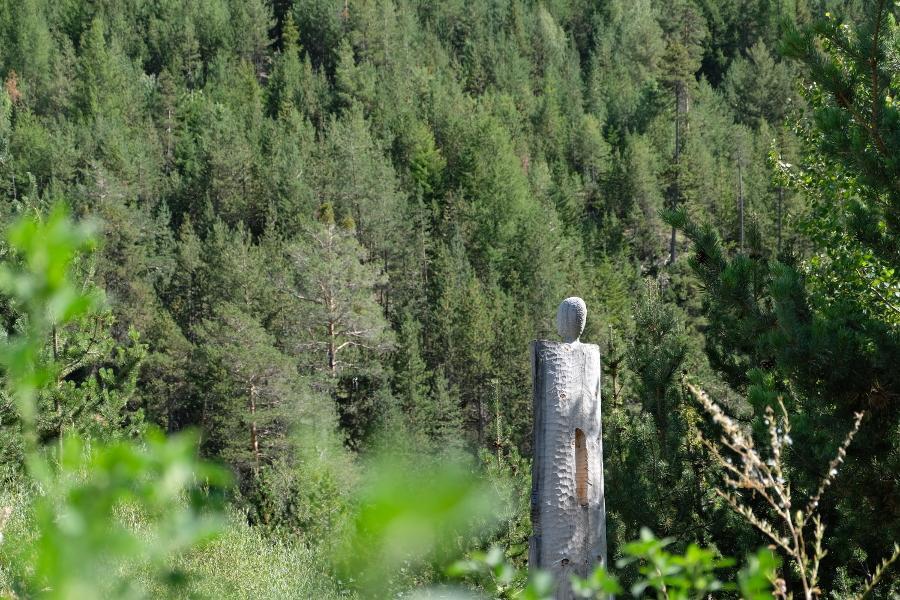 Thieroglyphe 360_installation bois  nature sculpture