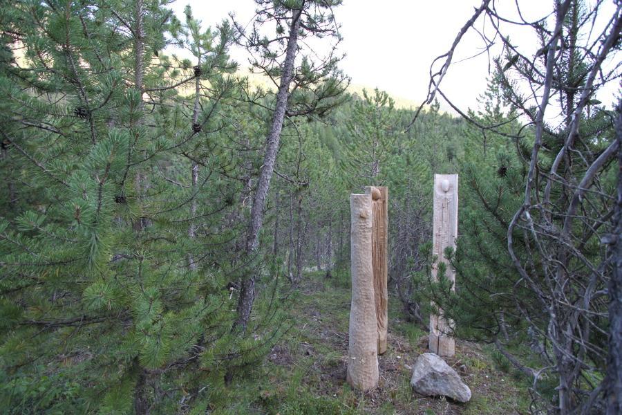 Les arbres parlent à la terre / 2016